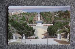 ALGER - Vue D'ensemble Du Jardin D'essai - Algiers