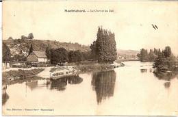 3H9  ---  41   MONTRICHARD   Le Cher Et Les Iles - Montrichard