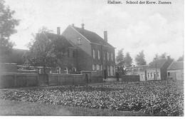 Hallaar - Heist-op-den-Berg