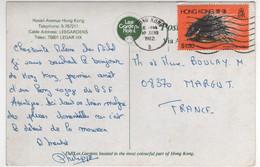 "Beau Timbre , Stamp   "" Animal : Porcépic "" Sur Cp , Carte , Postcard Du 10/06/82 - Hong Kong (...-1997)"