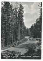 O3955 Taverna (Catanzaro) - Sila Piccola - Passeggiata - Villaggio Mancuso - Auto Cars Voitures / Viaggiata 1960 - Altre Città