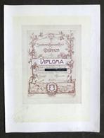 Soc. Educazione Fisica Costanza Milano - Diploma Lotta Greco Romana - 1929 - Vecchi Documenti