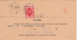 Slovenia SHS 1920 Postal Money Order With SHS Postage Due Stamp, Postmark LJUTOMER - Slovenia
