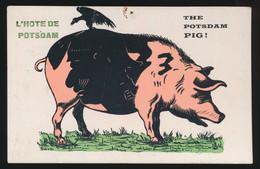 TOP !!!!  L'HOTE DE POTSDAM  THE POTSDAM PIG ! - War 1914-18