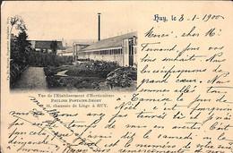 Huy - Vue De L'Etablissement D'Horticulture Pauline Fontaine-Degey 1900 (Edit. F De Ruyter) - Huy
