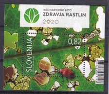 SLOVENIA 2020,United Nations International Year Of Plants Health; Insects; Beetle,INSECTS,BLOK,MNH - Slovenia