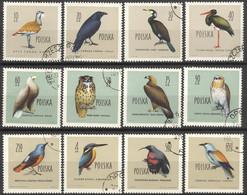 Polen 1197/1208 O Vögel - Gebraucht