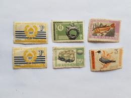URUGUAY 6 SELLOS, ARMADA, CENTRO INSTRUCCIÓN, MINERALOGIA, DORADO, GAVIOTA. 6 STAMPS - Uruguay