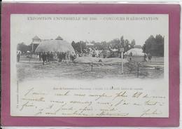 94.- EXPOSITION UNIVERSELLE  De 1900 Parc De L' Aérostation A VINCENNES 24 Juin 9h Du Matin Lâcher De Pigeons - Vincennes