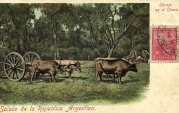 Saludo De La Republica Argentina Obraje En El Chaco + Timbre Recto Verso - Argentina