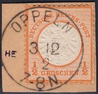 BRUSTSCHILD Nr.18 Idealer Sauberer K1 OPPELN (ch20) - Gebraucht