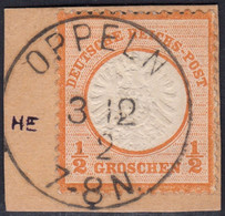 BRUSTSCHILD Nr.18 Idealer Sauberer K1 OPPELN (ch20) - Gebruikt
