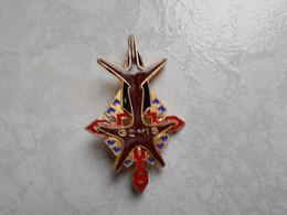 Insigne Groupe Saharien Mixte Du SOUF Fab Drago G 1848 émail Grand Feu - Militaria