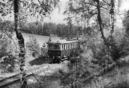DC4580 - Buckow (Märkische Schweiz) Waldbahn - Buckow