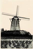Kazandmolen Rumbeke Uit 1813, Hier Rond 1940 Originele Foto 8x12cm - Non Classificati