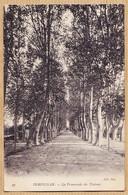 X66172 PERPIGNAN La Promenade Des PLATANES 1910s NEURDEIN 27 - Perpignan