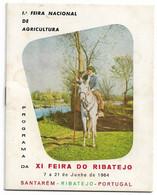 Portugal , Santarém , 1964 , 1ª Feira Nacional Agricultura , Praça De Toiros  Santarém (inauguração) , Feira Do Ribatejo - Programmes
