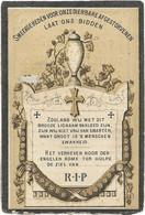 Lampo Pauline - Everbeek 1820/1885 - Todesanzeige
