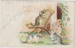 Chats Humanisé  Carte Gaufrée--(D.9817) - Cats