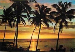 Ile Maurice - Pointe Aux Piments - CPM - Voir Scans Recto-Verso - Mauritius