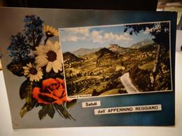 Cartolina Saluti Dall'appennino Reggiano Vallata Di Bismantova Prov Reggio Emilia - Reggio Emilia
