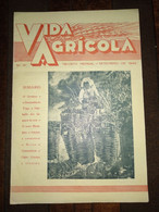 "Revista Portuguesa  Nº 31 Year 1940 ""VIDA AGRICOLA"" Capa, Começa A Vindima. - Books, Magazines, Comics"