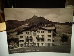 Cartolina  Torgnon Albergo Baita Cian Prov Aosta Anni 50 - Aosta