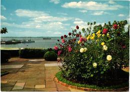 LUANDA - Vista Parcial- Porto De Luanda - Jardin Garden Fleurs Flowers - Angola - Angola