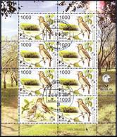 Belarus 2007 Fauna Bird Of The Year Nightingale MiNr.Klb.662 - Belarus