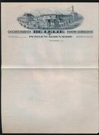 MOOI BRIEFHOOFD VAN ,, CHICOREIFABRIEK - DE LELIE - D'HAENE GEBROEDERS  ,, PETEGEM  OUDENAARDE - Oudenaarde