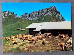 Stierenberghütte Ob Zweisimmen/ Vieh - BE Berne