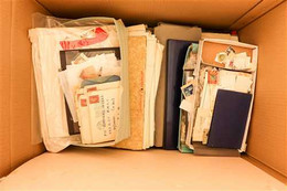 SORTERS PARADISE IN LARGE CARTON  Of All World Stamps On Various Album & Stock Pages, Loose Unsorted In Bags, Random Cov - Unclassified
