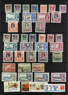 HORSES  BRITISH COMMONWEALTH 1890's-1980's Mint And Used Collection On Stock Pages, Mostly Featuring Horses, Plus Some U - Unclassified