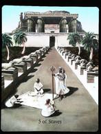 5 Of Staves Freemasonry - Osiris Maat Osirian Myth - A Divination & Meditation Tarot Maxi Card - Tarots