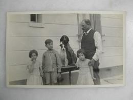 CARTE PHOTO - Portrait D'un Groupe Familial Avec Chiens - Fotografia