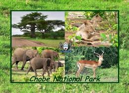 Botswana Chobe National Park Multiview New Postcard - Botswana