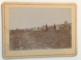 Photographie Ancienne - Bretagne Dolmen - Animée - Old (before 1900)