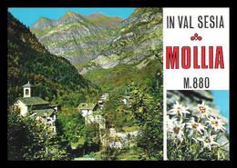 Valsesia - Mollia - Vg - Vercelli