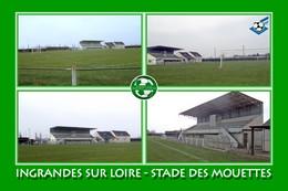 Ingrandes Sur Loire (49 - France) Stade Des Mouettes - Stadiums