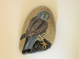 Original Painting Of A Kestral Bird Hand Painted On A Smooth Beach Stone Paperweight Decoration - Fermacarte