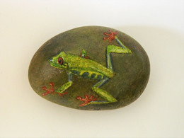 Original Painting Of An Orange-Eyed Tree Frog Hand Painted On A Smooth Beach Stone Paperweight Decoration - Briefbeschwerer