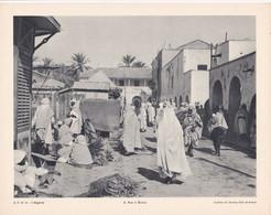 Chromo : Image Pédagogique : Algérie : BISKRA : Une Rue : Archives Du Touring Club De France : 27cm X 21cm : - Cromo