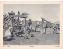 Chromo : Image Pédagogique : Algérie : KABYLIE : Puits : 27cm X 21cm : - Cromo