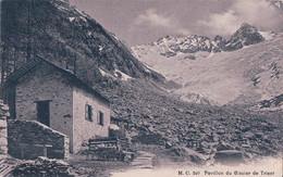 Pavillon Du Glacier De Trient VS (240) - VS Valais