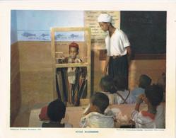 Chromo : Image Pédagogique : Algérie : Ecole  Algérienne  : 27cm X 21cm : - Cromo