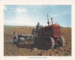 Chromo : Image Pédagogique : Algérie : Le Progrès Agricole En Algérie : Métier - Agriculture : 27cm X 21cm : - Cromo