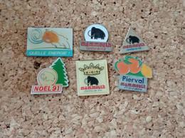 LOT DE 6 PINS MARQUE MAGASIN MAMMOUTH CENTRE DE VIE PIERVAL NOEL 91 - Trademarks