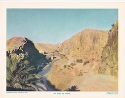Chromo : Image Pédagogique : Maroc : Un Oued : 27cm X 21cm : - Cromo