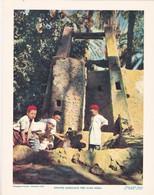 Chromo : Image Pédagogique : Maroc : Enfants Marocains Près D'une Noria : 27cm X 21cm : - Cromo