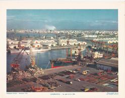 Chromo : Image Pédagogique : Maroc : CASABLANCA : Le Port Et La Ville : 27cm X 21cm : - Cromo
